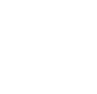 SHN House Icon